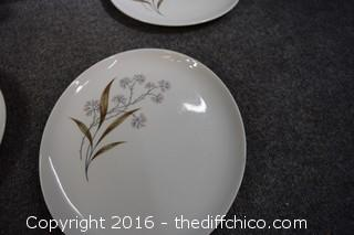 12 Replacement Dishes-Windswept Carefree China-Added the butter dish that we found