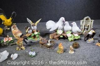 Bird Lot