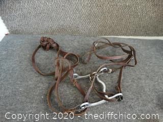 Head Stall With Reins
