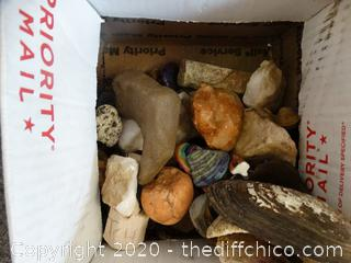 Rock & Shell Collection