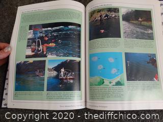 Trout Stream Fishing Strategies book