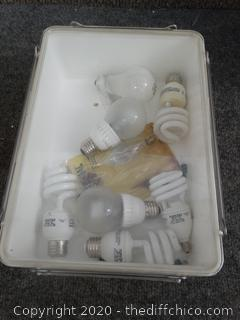 Lightbulbs in Vintage Tub