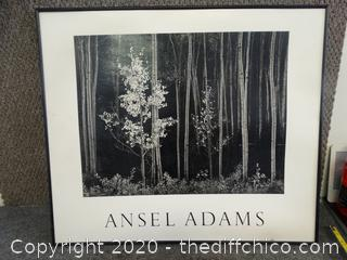 "Ansel Adams Picture - No Glass, 28"" x 24"""