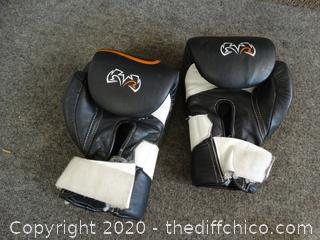 Rival Boxing Gloves
