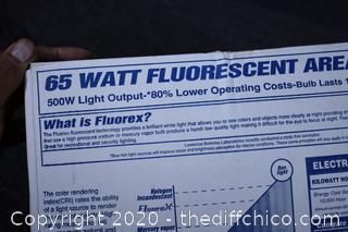 Working Fluorescent Security Light