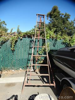 Wooden Orchard Ladder 8'