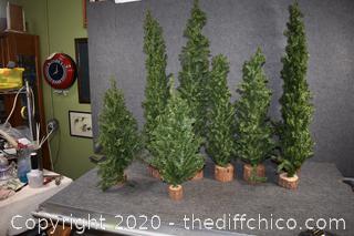 8 Decorative Trees