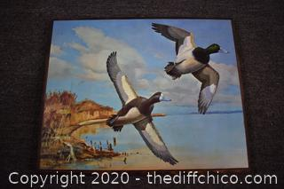 Richard Bisley Duck Plaque - Greater Scaups