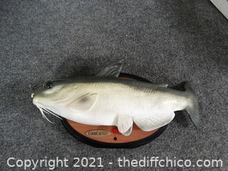 Cool Talking Catfish
