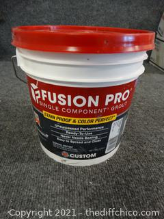 Fusion Pro Stain & Color Perfect Grout