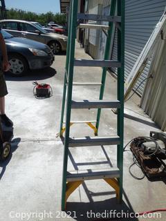 """Werner Ladder 5' 9"""""""