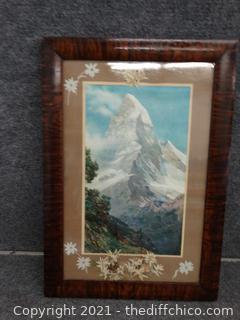 """Signed Framed Art 20 """" x 14 """""""