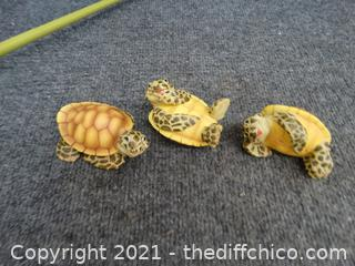 Turtle Knick Knacks