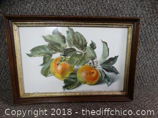 Peach Picture