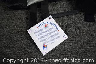 Folding Giants Stadium Seat