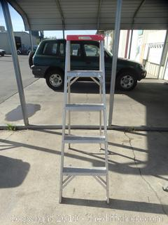 5ft Ladder