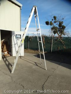 "7' -7"" Louisville Ladder"