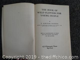 The Book Of Wild Flowers For Young People 1923