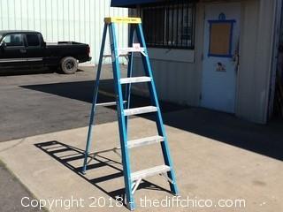 werner 6ft ladder
