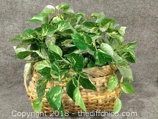 """Topiary - 17"""" x 17"""""""