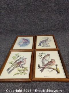 "4 Vintage Bird Pictures - 8 3/4"" x 6 3/4"""